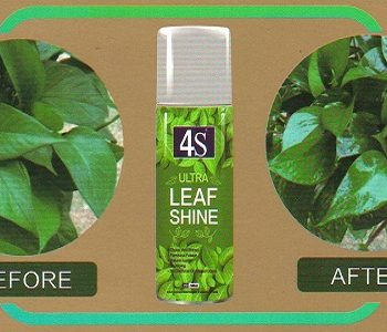 leafshine spray